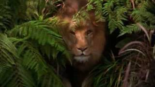 George Of The Jungle Tamil Dubbed Full Movie