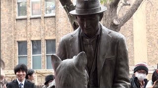 Hachiko A Dog S Story Full Movie In Hindi Dubbed